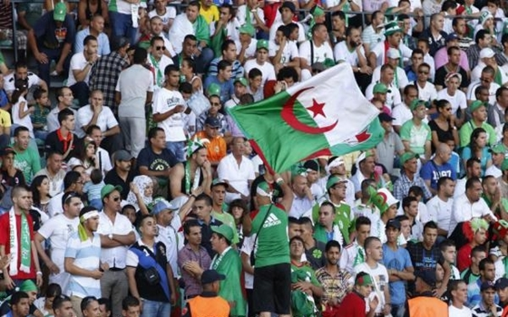 مصر اليوم - منتخب غانا يطيح بنظيره الجزائري خارج البطولة الأفريقية بهدفين