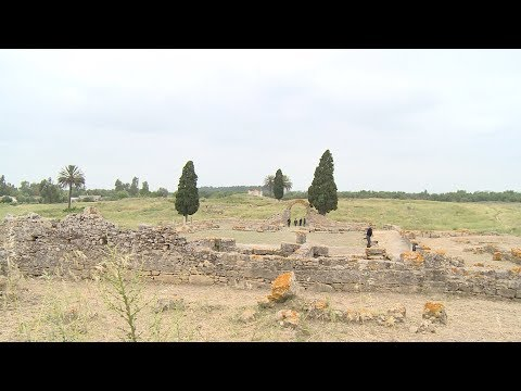 شاهد  موقع بناصا الأثري في منطقة الغرب